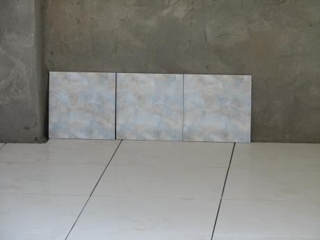 The wall tile on display