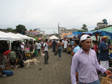 The busy market