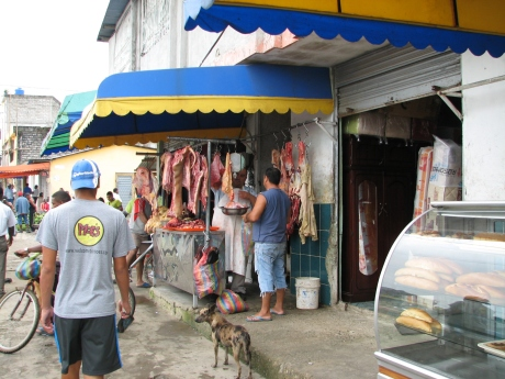 Local meat market